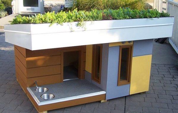 Модель будки с необычным решением для крыши для алабая